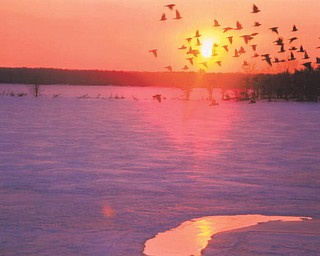 Here's a shot of Berlin Lake in the winter. Photo sent in by Lana Vanauker of Canfield.
