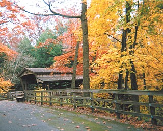 Linda Martin of Youngstown submitted this photo she took last year at Mill Creek Park.