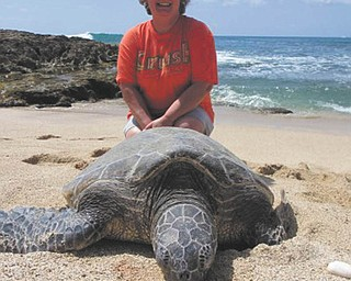 Cathy Ferenchak of Canfield sent in this photo. She's posing with a huge turtle in Hawaii.