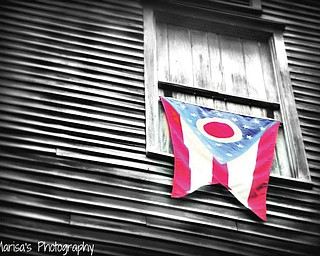 Marisa Stephenson of Poland sent in this photo of Ohio's flag, which was taken next to Lanterman's Mill in Youngstown while she was out walking with her mom and twin sister.