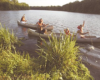 Members of Boy Scout troop 115 of Canfield participate in a canoe training event at LakeNewport in Mill Creek Park 7-24-12. They were prepapring for an annual canoe trip to the Mohican River in southern Ohio.