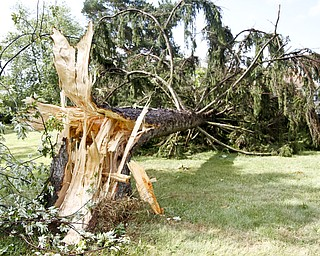 Storm damage in Girard, Ohio on August 5, 2012.