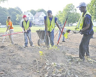 Volunteers, from left, Jerry Mims, Damon Dumns, Derek Etto and Ricky Williams, all of Youngstown, and Devin Harden of Coitsville clear out a lot on Truesdale Avenue to prepare it to be a park.
