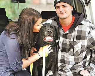 Beo was reunited Wednesday morning with his owner, U.S. Army Private First Class Michelle Delvillan.  The 80-pound black lab, sporting a yellow U.S. Army collar, watched from Carella's driveway as Delvillan and her husband, Rob Rodrigues, drove up.