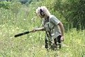 Lisa Rainsong, a Cleveland Museum of Natural History volunteer from Cleveland Heights, records sounds made by insects, amphibians and birds.