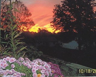 This is the view at sunrise on the south side of Evelyn Ernst's house in Salem.