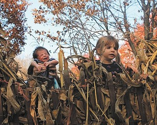 Lorenzo Michael Testa (2 weeks old) and Sophia Sicilia Testa (22 months old) are enjoying a beautiful fall day.