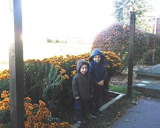 """Millie Valentino sent this adorable picture of Alexander and Vasilios, with this question: """"Do you think they were hiding in the mums?"""""""