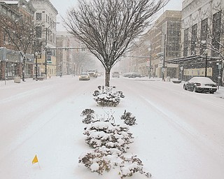Cars inch their way through the accumulating snow on West Federal Street on Wednesday. The storm that was estimated to bring 8 to 12 inches by today closed libraries and government offices, but some businesses on West Federal stayed open to give walkers a warm place to go.