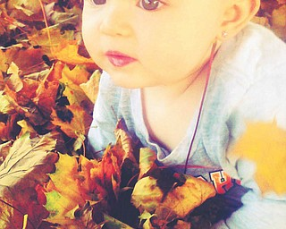 Erin Lenhart of Boardman says her resolution is to take more pictures this year so she is able to capture more beautiful moments like this one of her niece, Skylar Rae, who is playing in the leaves!