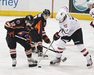 Youngstown's Nathan Walker (10) and Sam Anas (7) battle Chicago's Jacob Slavin for the puck during the Phantoms' School Day game Wednesday at the Covelli Centre. Hundreds of students from area schools watched as the Phantoms shut out the Steel, 4-0.