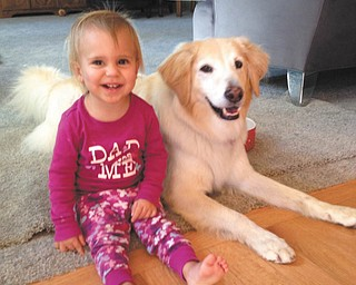 Here's a photo of little Gianna hanging out with Presley, her great-aunt's and great-uncle's dog. It was taken on the Fourth of July at their house in Canfield.