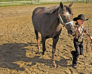 Ella Perry, 6, of New Middletown shows her quarter pony Missy in the halter open class during the Penn-Ohio Horseman's Association Double Point Open Horse Show on Sunday at the Canfield Fairgrounds. Ella and Missy took first place in the class.