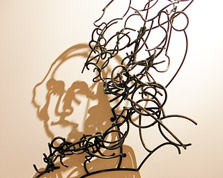 Shadow images cast by the wire artwork of Larry Kagan at The Butler Institute of American Art on Wick Avenue.