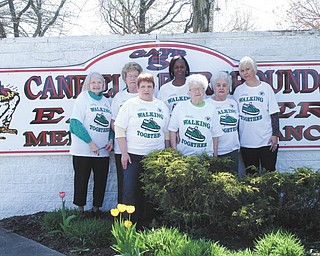 SPECIAL TO THE VINDICATOR The Alzheimer's Network's Walk Planning Committee gathered at the Canfield Fairgrounds to prepare for the May 18 event. Volunteers, from left, are Dorothy Barto, Carol Yarob, Kathy Fynes, Velma Crawley, Mary Erb, Carmela Guy and Mary Kay Kollat. The event is called Walking Together to symbolize the bond between patient and caregiver as well as the support for families on their journey through the disease. The public is welcome to walk in memory of a loved one or to help create more awareness of Alzheimer's disease. For information call 330-788-9755.