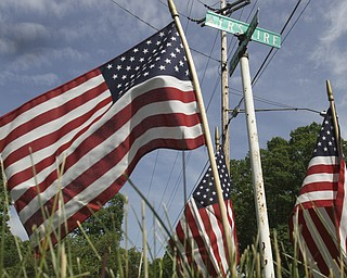 William D. Lewis\The Vindicator Flags placed at Edinburg and Ayshire in Austintown.