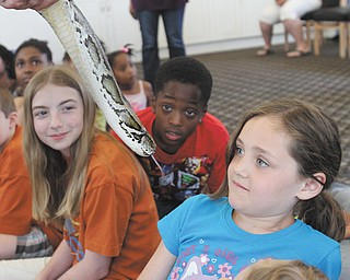 A 12-foot Burmese python gets the full attention of, from left, Hannah Harris, 12; Naiden Maynard, 8; and Kyleigh Kiester, 7, during an animal presentation by Jungle Terry. Terry, whose real name is Terry Sullivan, showed off the reptile Monday at the East Side public library on Jacobs Road.