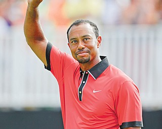 Tiger Woods — his win at the Bridgestone Invitational in Akron on Sunday fresh in his mind — arrived at Oak Hill ready to learn the greens and whatever necessary to win another major.