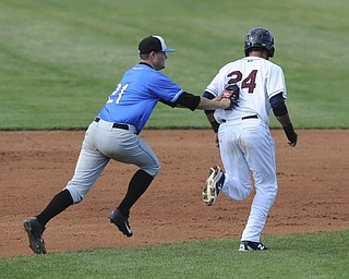 Renegades infielder #21 Ben Griset tags out Scrappers base runner #24 Brian Ruiz who was caught in a rundown in the bottom of the 4th inning during a game between the Scrappers and Renegades on August 1, 2013.