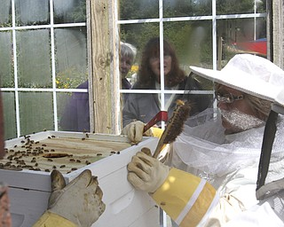William D Lewis The Vindicator  Lori Mowad, Mill Creek Park Fellows riverside garden employee opens a bee hive. Spectators watch through a window.