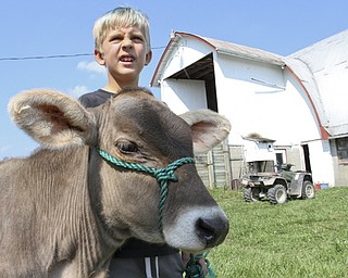 William D. Lewis The Vindicator Colby Turon, 9, with a calf on his family's West Farmington Farm.