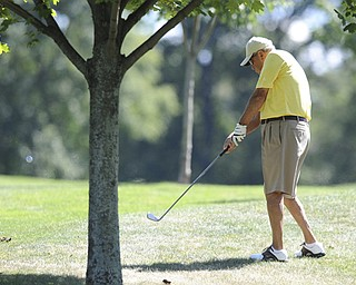 Golfer Bob Lidle of Poland shoots out of the short rough and onto the fairway on the 14th hole Saturday afternoon at The Lake Club as part of the Vindy Greatest Golfer tournament on August 24.