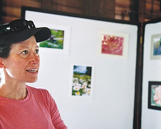 Linda Lambert of Bethesda, Md., admires the artwork on display in the Lanterman's Mill art show, which ran Friday through Sunday on the second floor of the mill. Artwork included photographs, paintings and drawings.