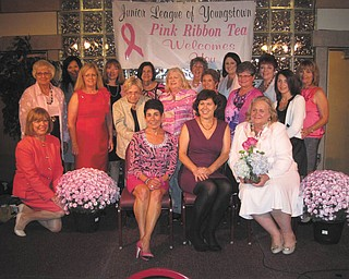 SPECIAL TO THE VINDICATOR Those involved with the 19th Annual Pink Ribbon Tea are, from left in the first row, Suzanne Fleming, Annette Camacci, Jennie Nash and Sue Berny. In the second row are Barb Schuller, Katy Shroder, Linda Sisek, Carolyn Stoneburner, Toni Douglass, Susan Stewart and Anne Marie Newman; and in the third row are Sue Trebilcock, Paula Stefanski, Mary Alice Boyd, Rae Lackner, Leah Wilson, Pat Butto and Karen Thomas. The annual event celebrates the survival of women diagnosed with breast cancer.
