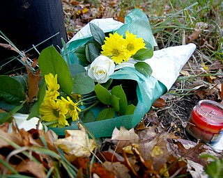 MADELYN P. HASTINGS | THE VINDICATOR..Flowers are placed at the site of a two vehicle car accident along Connelly Blvd. near the intersection of Route 62. The accident caused three deaths with four others injured at around 10:00 p.m. on Friday, November 10, 2013.  ... - -30-..
