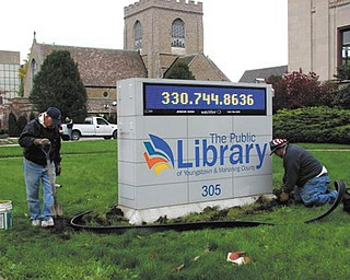 SPECIAL TO THE VINDICATOR Men's Garden Club of Youngstown members Ted Vagas, John Kolar, Mason Carratt and Bob Stas planted tulips and roses along Wick Avenue on a recent fall day as part of the club's ongoing civic projects.