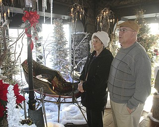 William D Lewis  the vindicator. Barb and George Gulgas of Liberty take in the sights Saturday 12-28-13 during a tour of the Arms Family Museum in Youngstown.