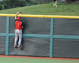 BLOOMINGTON, INDIANA - MAY 30, 2014: Outfielder Kevin Hix #1 of Youngstown State attempts to climb the wall to catch a would be three run home run for Indiana during Friday nights regional tournament game against Indiana University. (Photo by David Dermer/Youngstown Vindicator)