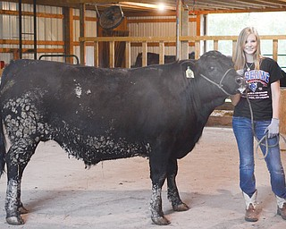 Abby Hemphill, 17, of Berlin Center is preparing for the 168th Canfield Fair. Her sister Emily, 11, also will participate.