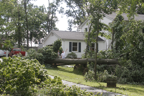 ROBERT K. YOSAY  | THE VINDICATOR...Houses on Blueberry Hill  in Canfield as a late afternoon storm downed trees .  -30-