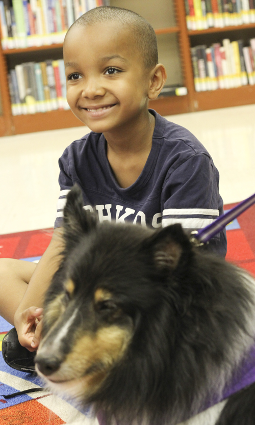 """Dontay Miller (7) of Youngstown pets """"Shadow"""" the Sheltie at the Brownlee Woods branch of the Public Library of Youngstown on Saturday afternoon.   Dustin Livesay  