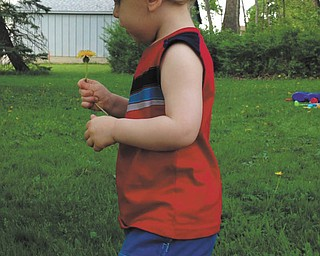 Logan Cheney of Hubbard was picking flowers on a warm summer day. Sent by his mom, Amanda Liston.