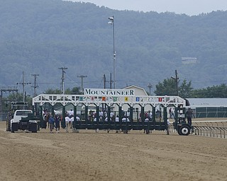Katie Rickman   The Vindicator.Horses are led the starting gate at the West Virginia Derby August 2, 2014.