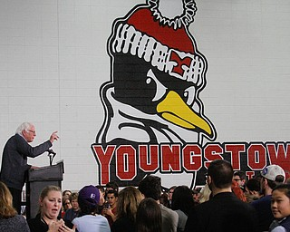 ROBERT K. YOSAY  | THE VINDICATOR..Bernie Sanders  spoke to a crowd of over 300 supporters at YSU stadium gym. in support of Hillary Kaine thursday afternoon... - -30-...