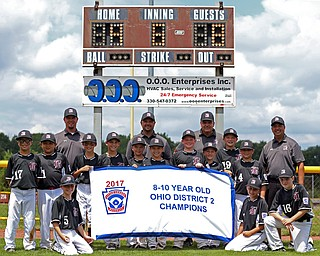 7-15-17  BASEBALL 8-10 yrs. Ohio D2 Championship- Boardman Spartans vs Canfield Cardinals at Field of Dreams in Boardman, OH..2017 8-10 yrs. Ohio D2 Champions Boardman Spartans.