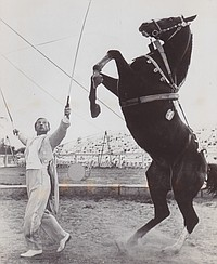 Years Ago: Circus Comes to Town