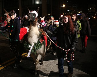 Members of the Llucky Llamas 4-H Club walk during the annual Youngstown Christmas Parade and Tree lighting, Friday, Dec. 1, 2017, in downtown Youngstown...(Nikos Frazier | The Vindicator)
