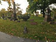 A view of Oak Hill Cemetery in Youngstown. Sunday, Oct. 11, 2009.