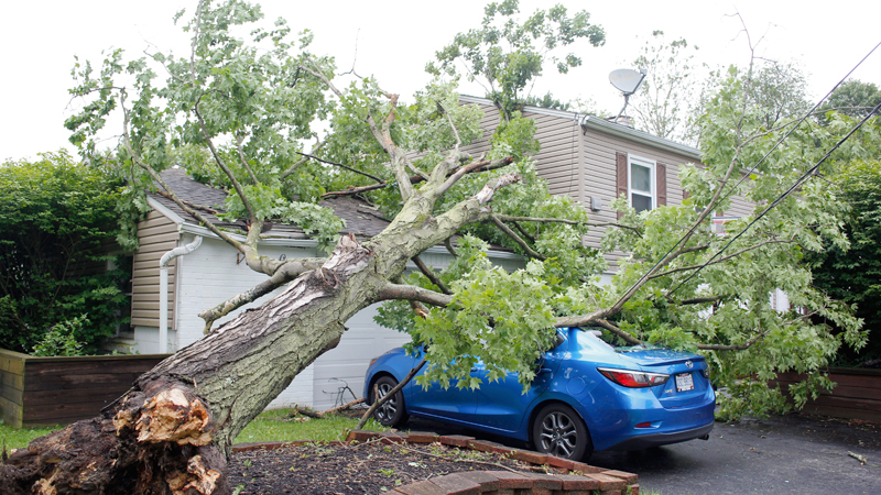 Storms, heavy rain, high winds whip Valley