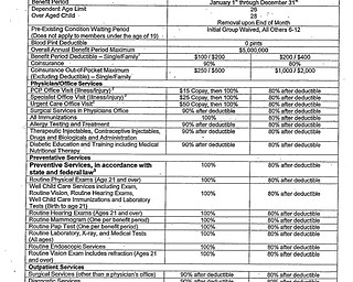 Boardman Police Proposed Medical Plan