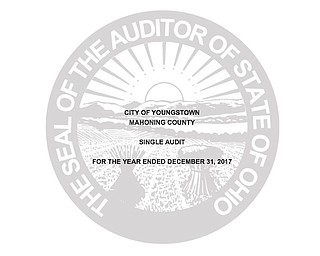INDEPENDENT AUDITOR'S REPORT ON THE CITY OF YOUNGSTOWN