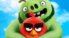 'Birds' sequel stays aloft