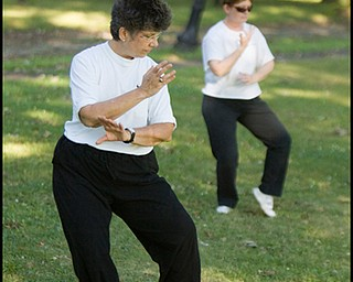 7.31.2008 Marie Lew and Evaline Abram-Diroll, both of the North Side, practice Tai Chi in Wick Park.