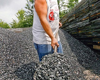 MOUNTING POSSIBILITIES: The growing demand for alternative energy sources keeps Shawn Burke of Bush's Fireplace in North Jackson busy shoveling coal.
