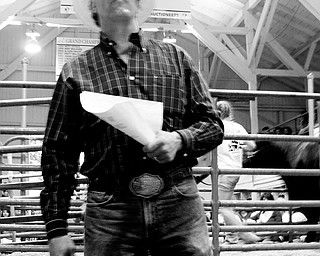 LONG HISTORY: Don Braham of Grove City, Pa., is in his 27th year of auctioning., and was working in the market beef auction Friday at the Canfield Fair. In the audience were local business owners, professionals and residents who enjoy supporting the 4-H members.