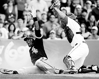 I'M SAFE! Alexei Ramirez, left, of the Chicago White Sox yells as he slides in safely to home plate, beating the tag of the Boston Red Sox catcher Kevin Cash in the ninth inning of Chicago's 4-2 win at Fenway Park.